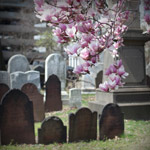 wrongful death representation